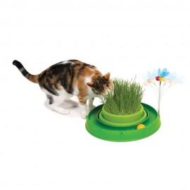 Tor Catit Play n Scratch z trawą dla kota 3w1