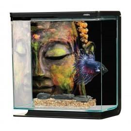 Zestaw akwarium Marina Betta BLUE, 3L, 21 x 11 x 21 cm