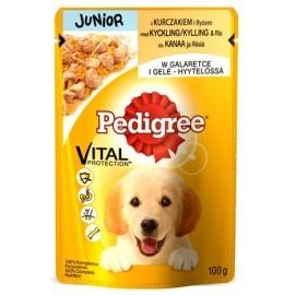 Pedigree Junior saszetka 100g