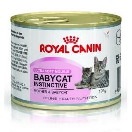 Royal Canin Mother & Babycat Instinctive Mousse karma mokra - mus dla kociąt i kotek karmiących puszka 195g